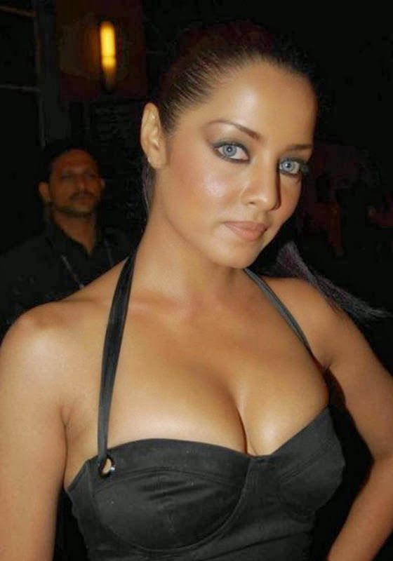 jaitley Actress celina