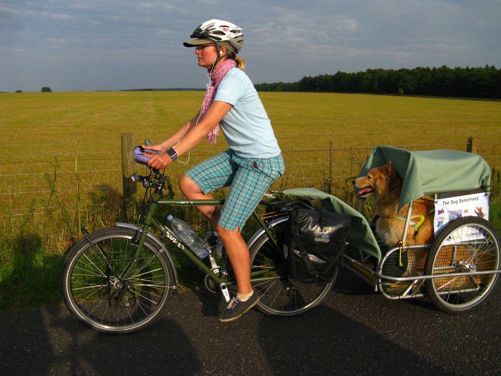 Dogs On Bikes Biking With Dog Dog Trailer Dog Bike Trailer
