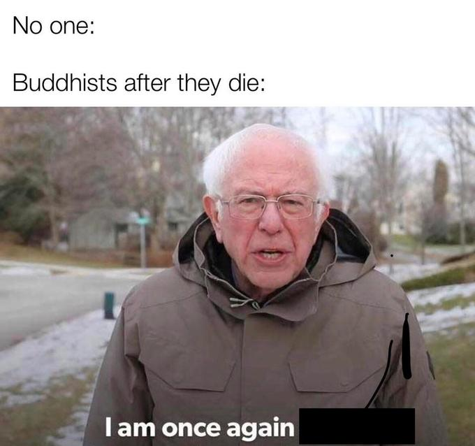 I Am Once Again Buddhist I Am Once Again Asking For Your Financial Support Stupid Memes Funny Relatable Memes Funny
