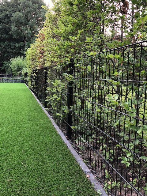 This type of backyard fence is absolutely an interesting ...