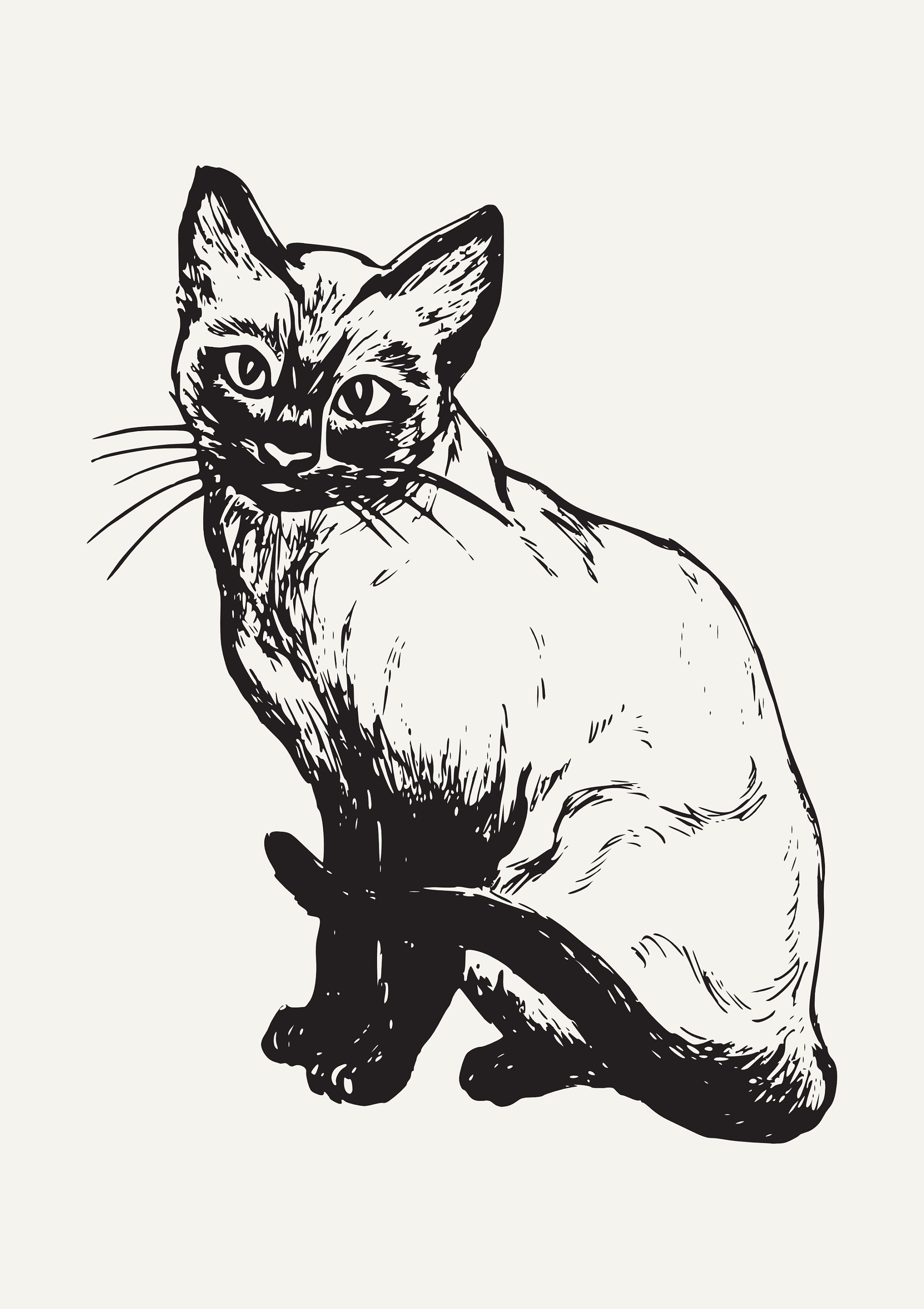 Siamese Cat Drawing Print Black And White Cat Decor Print Poster