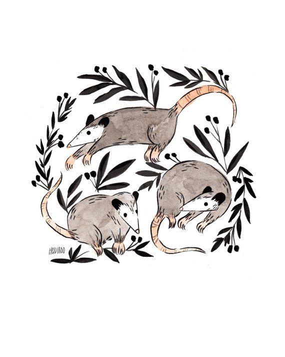 Opossum art print   cute opossums print   giclee print   possum ...