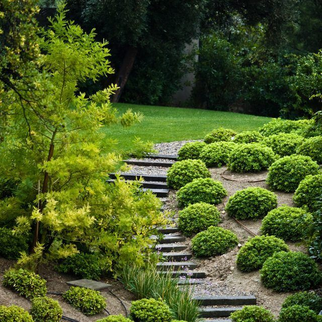 Sloping Garden Ideas And Optimal Solutions For Landscape: Do It Yourself Cheap And Easy Backyard Landscaping