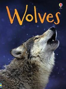 Father, Son, Sword: The Lone Wolf and Cub Saga (Arrow Books)