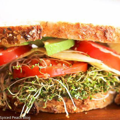 Avocado and Alfalfa Sprouts