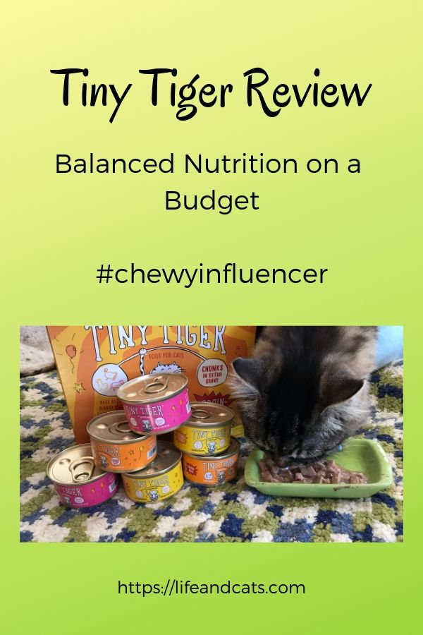 Tiny Tiger Cat Food Review Good Nutrition on a Budget