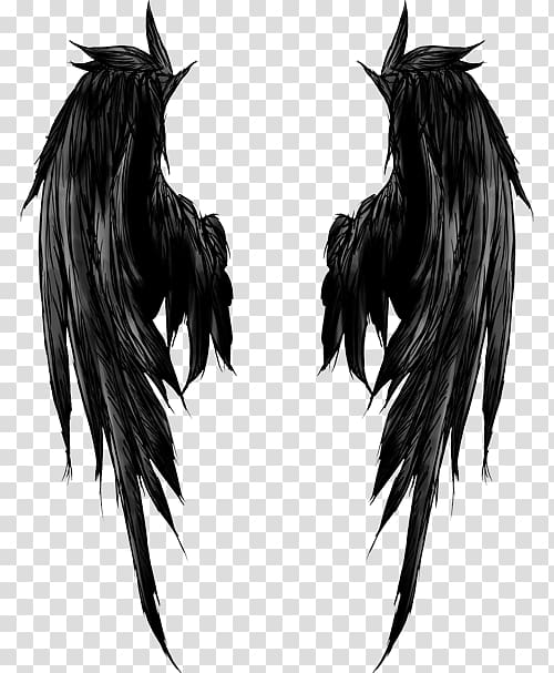 Drawing Angel Tattoo Sketch Toilet Rules Transparent Background Png Clipart Wing Tattoos On Back Wings Tattoo Wings Drawing