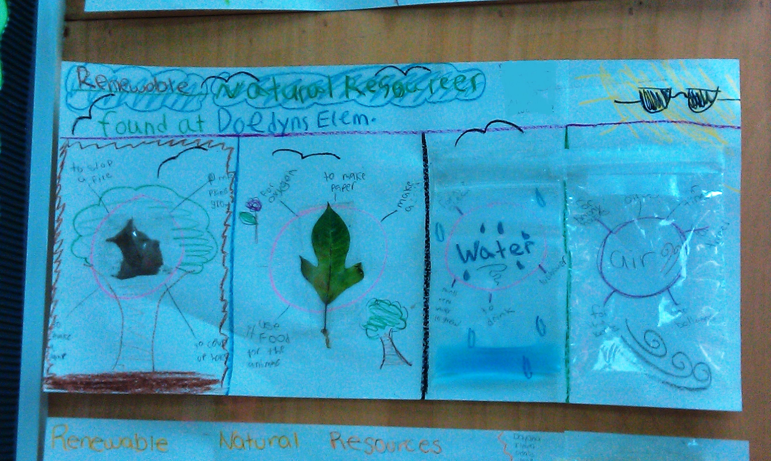 Renewable Natural Resources Interactive Activity Use