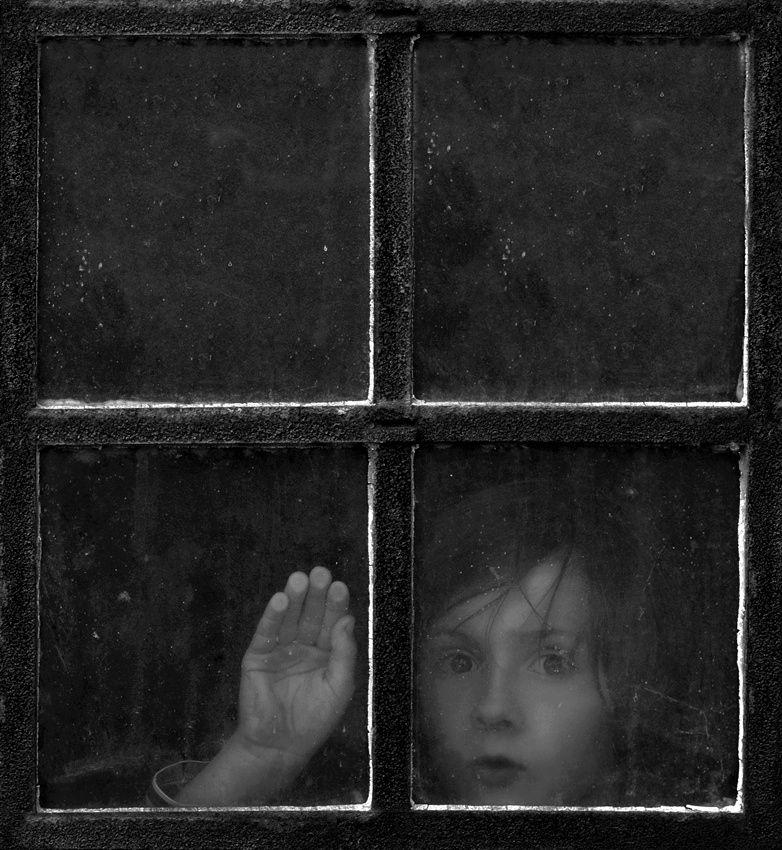 brownie window -