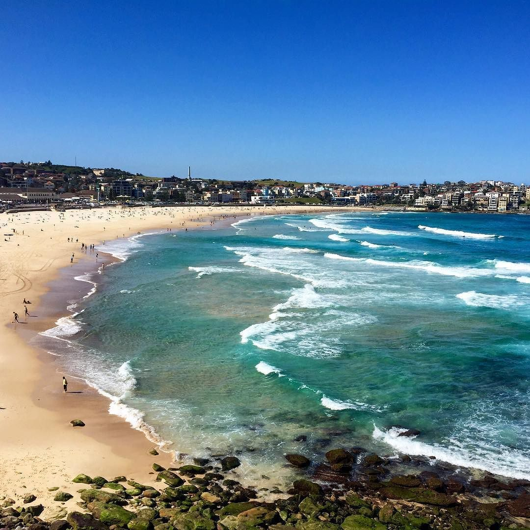 Hey sunshine  welcome back #bondi #bondibeach #bonditobronte #bondilife #lovebondi #sydney #explore #travelandlife #sydneylife #beautifuldestinations #amazingplaces #earthpix #ig_worldcup #instamoment #oceanview #nature by lindamansfeld http://ift.tt/1KBxVYg