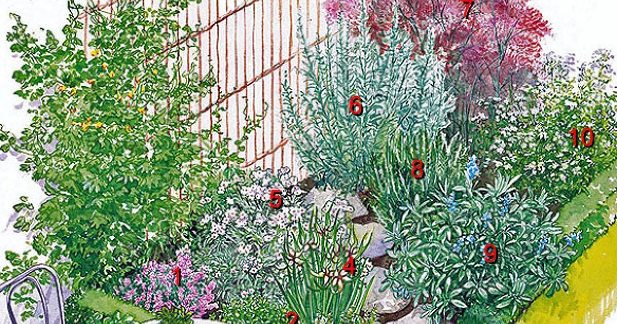 Frische Wurze Aus Dem Garten Ein Krauterbeet Anlegen Garten Krauterbeet Garten Anlegen