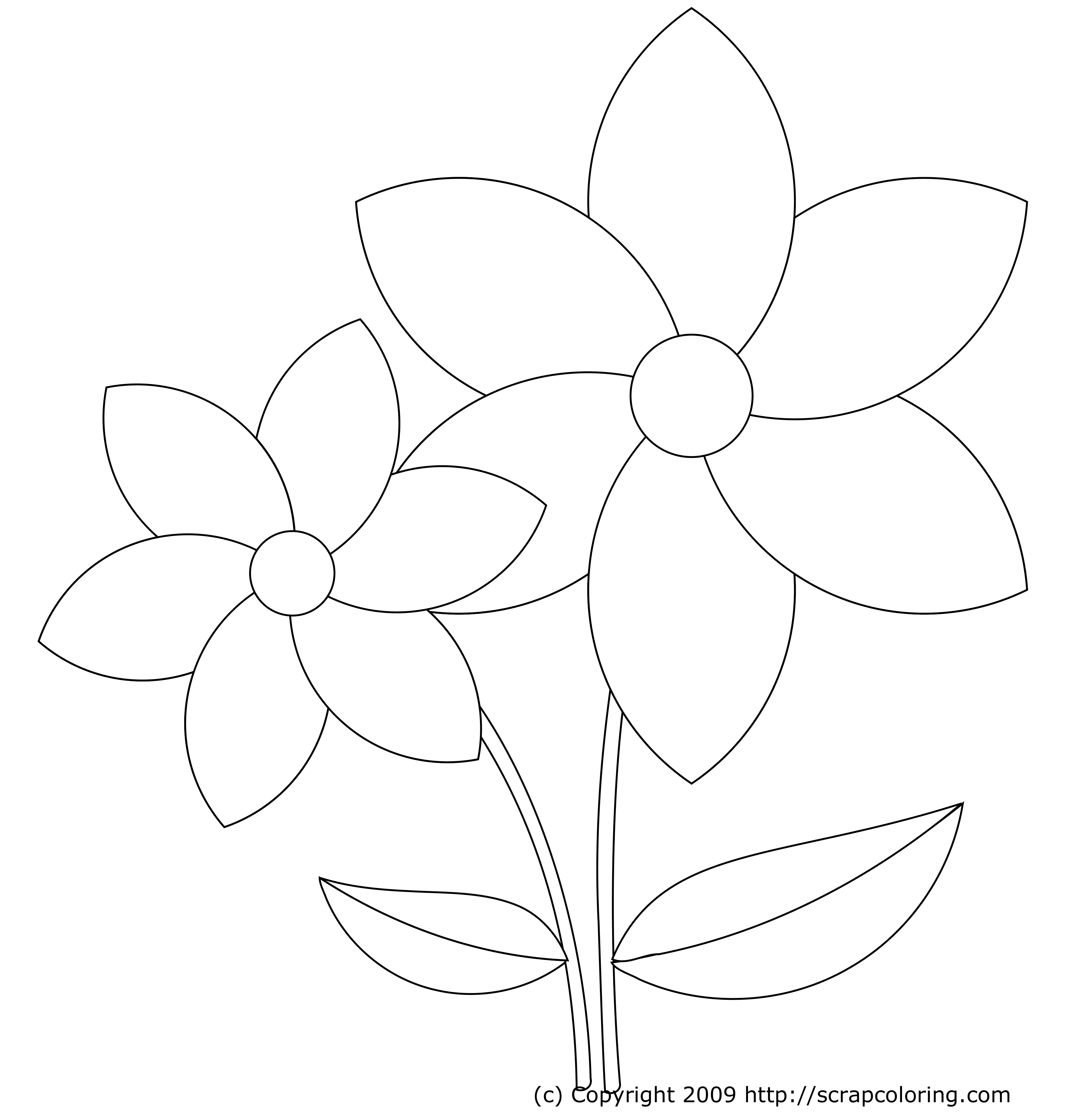 Colouring pages of flowers - Flower Coloring Pages Yahoo Image Search Results