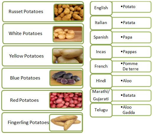 Different Types Of Potatoes: Also Known As