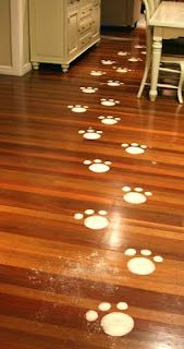 How To Make Bunny Footprints With Baby Powder : bunny, footprints, powder, Easter, Bunny, Footprints, Leading, Their, Eggs...(what, Isn't, Photo, Chocolate-covered, Lic…, Footprints,, Activities,