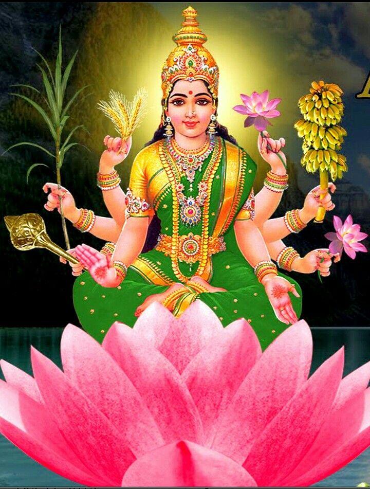Dhanya Lakshmi Mata | Lakshmi images, Hindu deities, Hindu gods