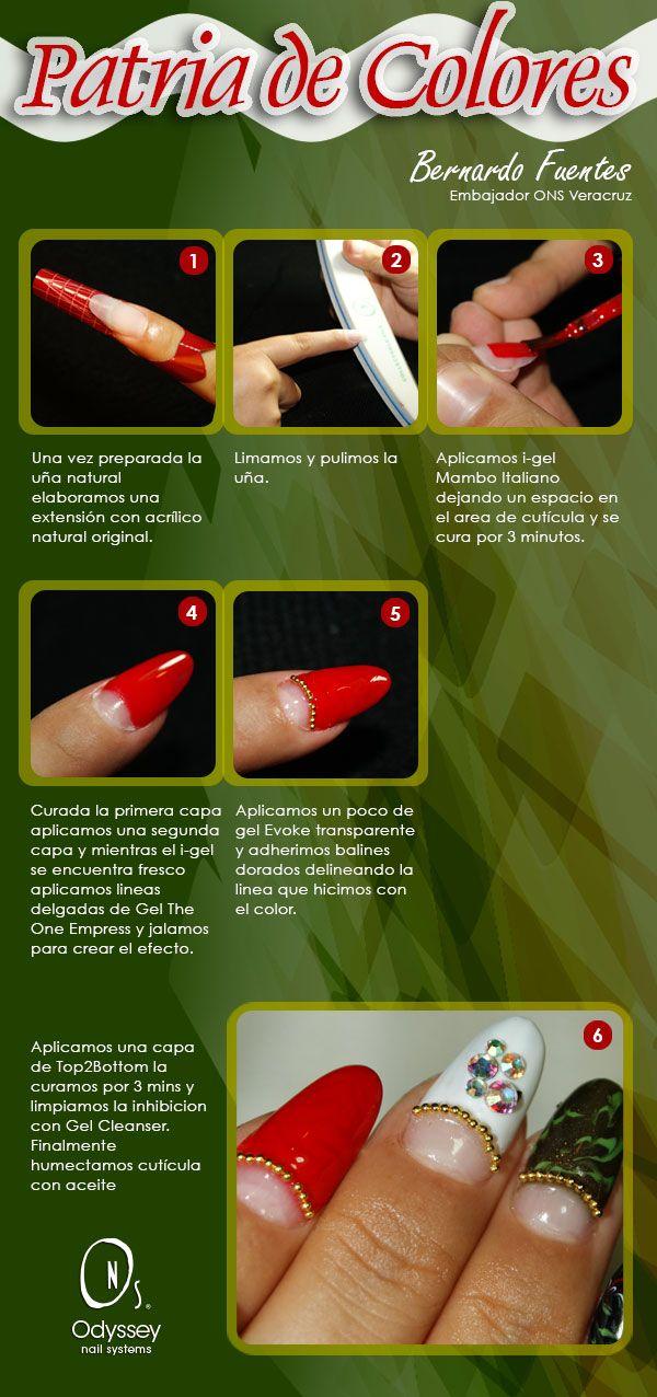 ¡¡LLEGÓ EL MES PATRIO!!  y para que andes a la moda te traemos un paso a paso creado por Bernardo Fuentes, Embajador ONS Xalapa