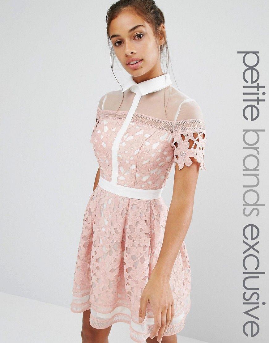 Chi Chi London Petite Premium Lace Mini Skater Dress With Contrast Collar At Asos Com Petite Lace Dress Mini Skater Dress Petite Dresses