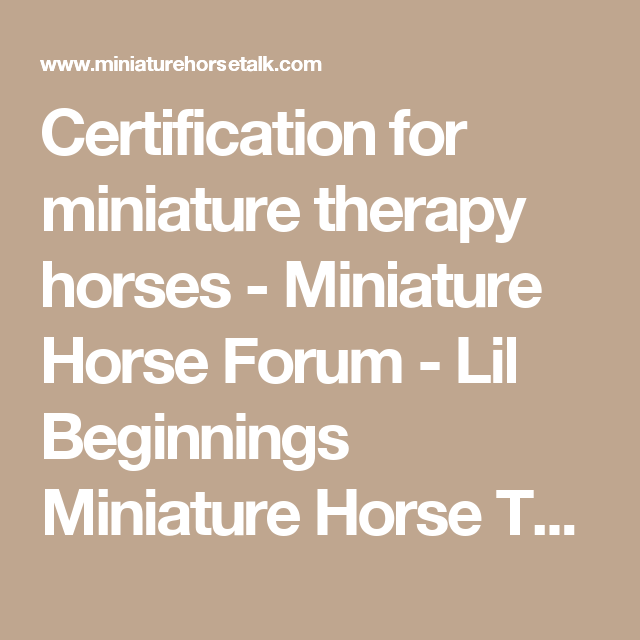 Certification for miniature therapy horses - Miniature Horse Forum ...