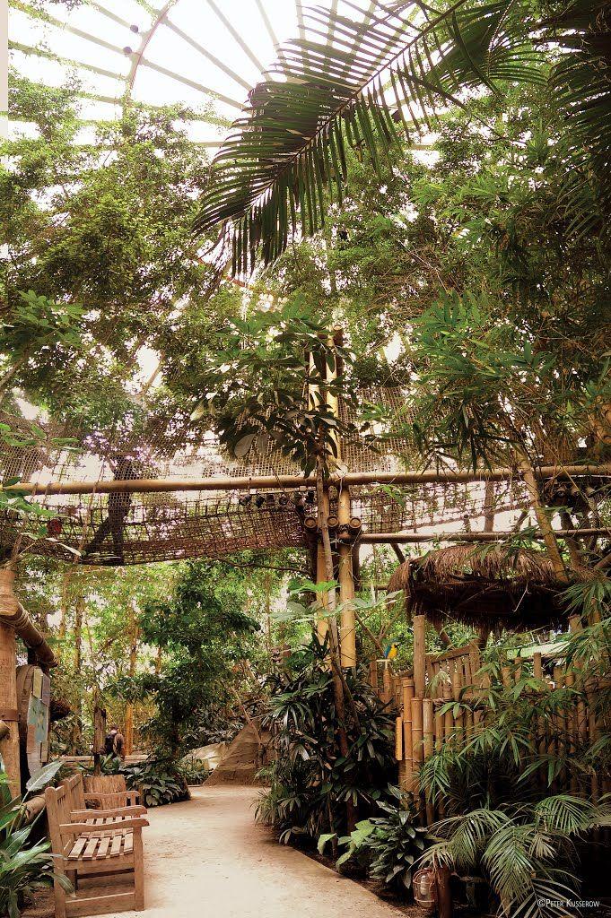 Center Park Het Heijderbos Jungle Dome Panoramische Beeld