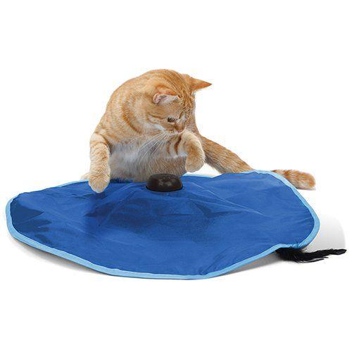 jouet pour chat tapis de jeu attrape