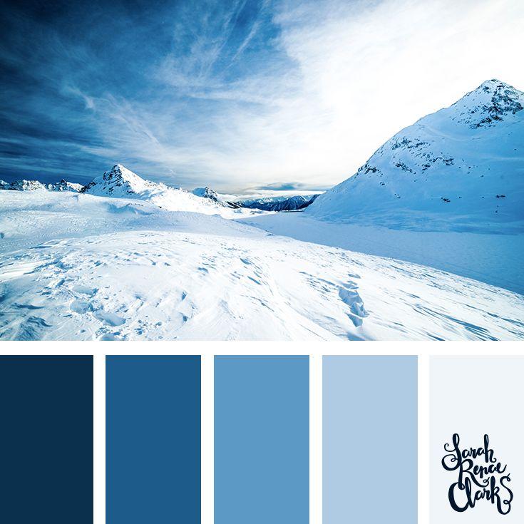 25 Winter Color Palettes Color Inspiration Color