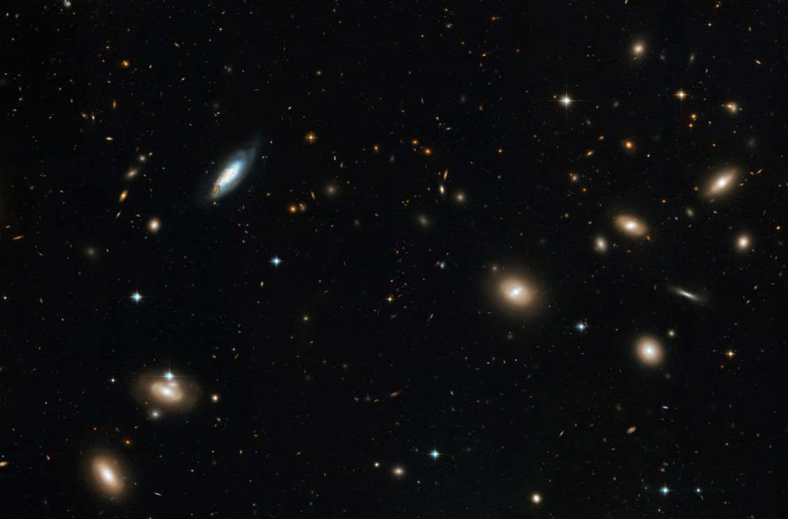 Inside the Coma Cluster of Galaxies - Hubble Heritage/ESA/NASA