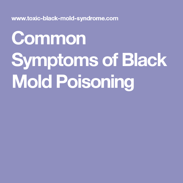 Explore Mold In Basement, Black Mold Symptoms, And More!