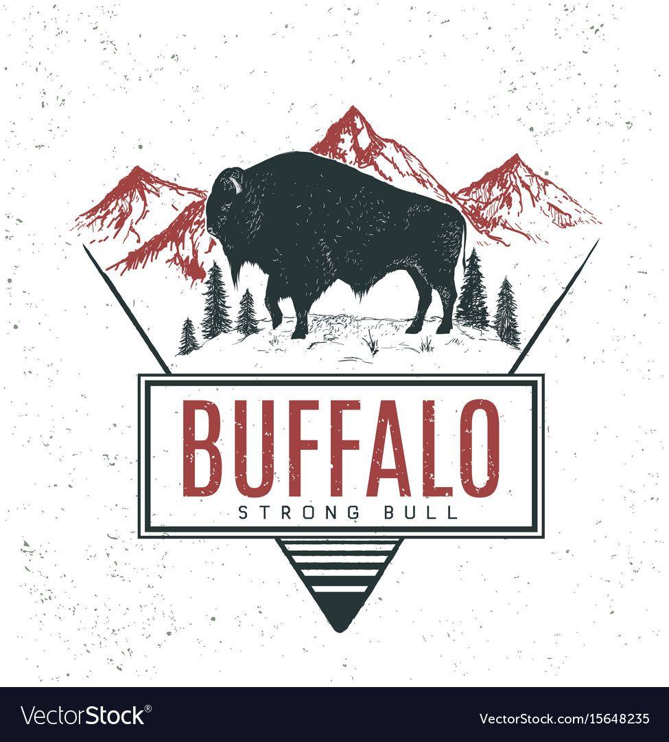 Old retro logo with bull buffalo vector image on Animal