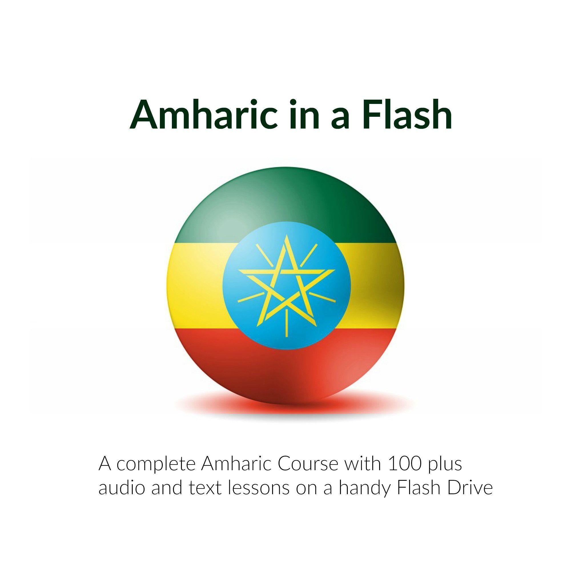 Amharic in a flash amharic language language resources