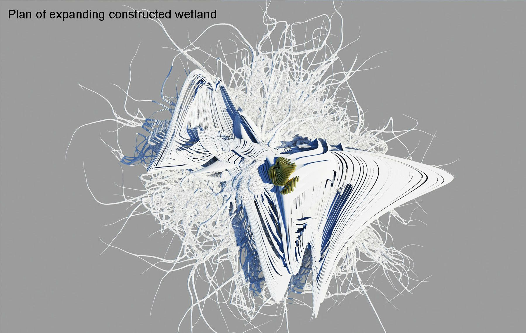 Constructed expanding Wetland Margot Krasojevic