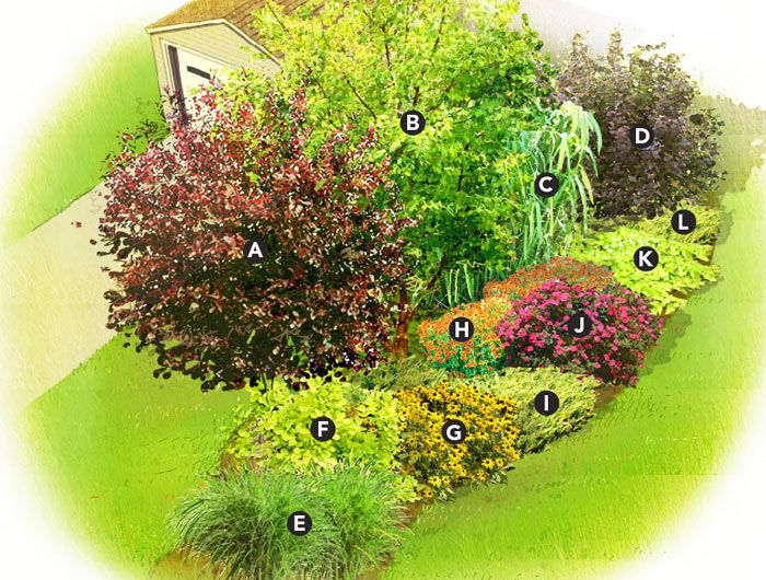 Quick Privacy Garden Plan This Mix Of Trees Shrubs And Perennials Makes A Lovely And Quick Growing Screen For Privacy Or To Mask An Eyesore