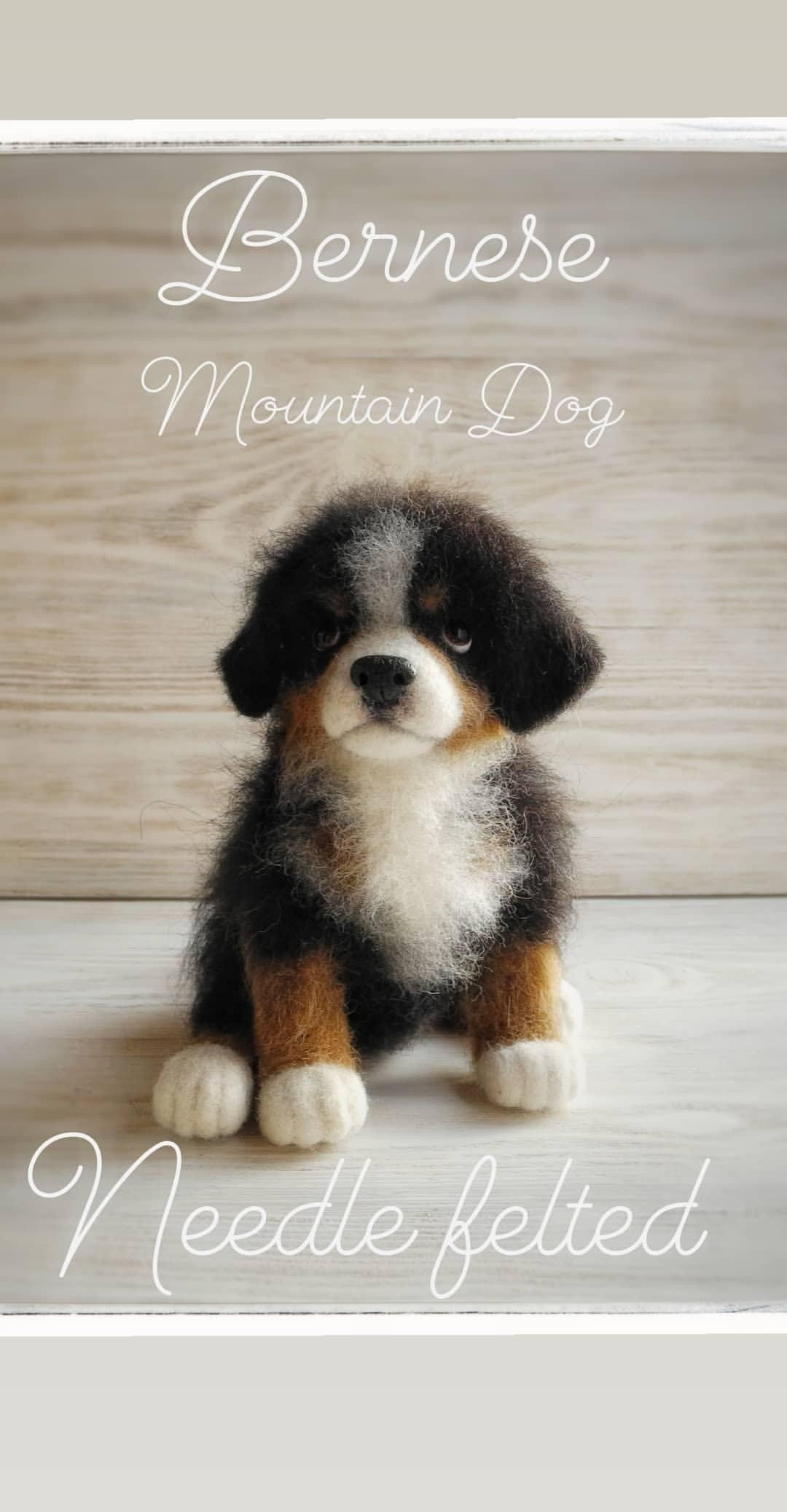 Bernese Mountain Dog, puppy #needlefelting