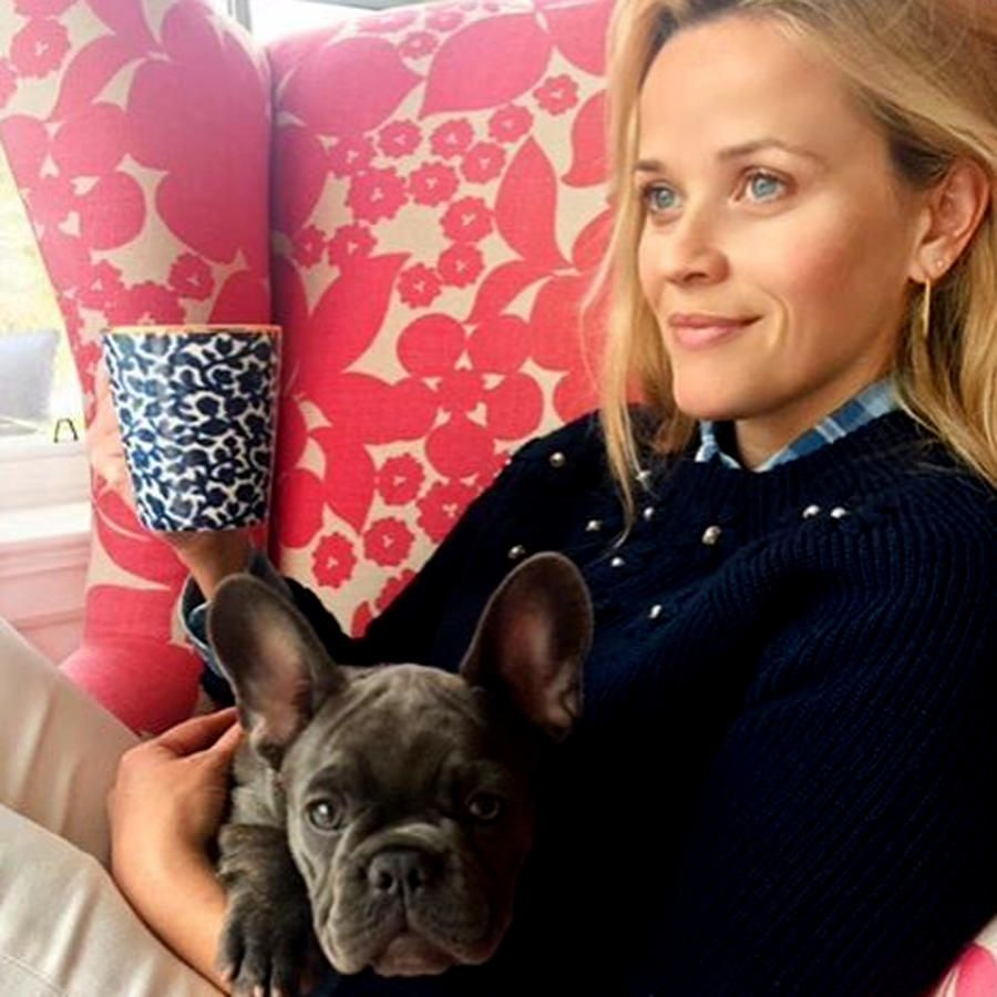 Living the Dream in Her Living Room - Every Time Reese Witherspoon Gave Us Major House Envy - Southernliving. That one time she enjoyed a toasty beverage while canoodling with her pup in a massive floral-print wing chair.
