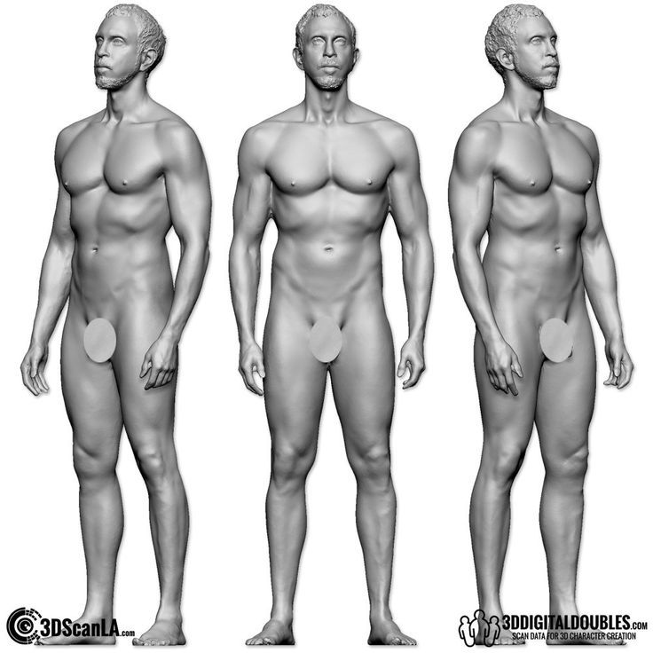 male physique reference - Google Search | Men\'s Fitness Shapes ...