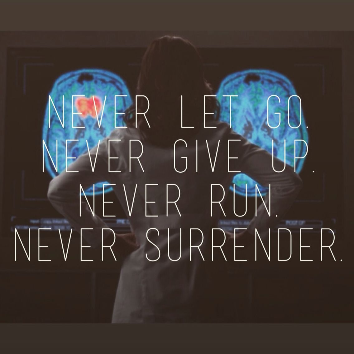 Never Let Go Never Give Up Never Run Never Surrender Amelia