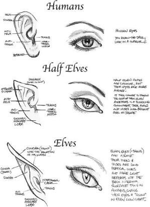 Eye And Ear Drawing Styles By Williams1967 Drawing Tips Art Reference Drawings