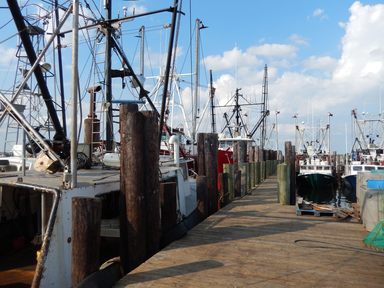 Fishing docks Barnegat Light NJ Fav Places Pinterest