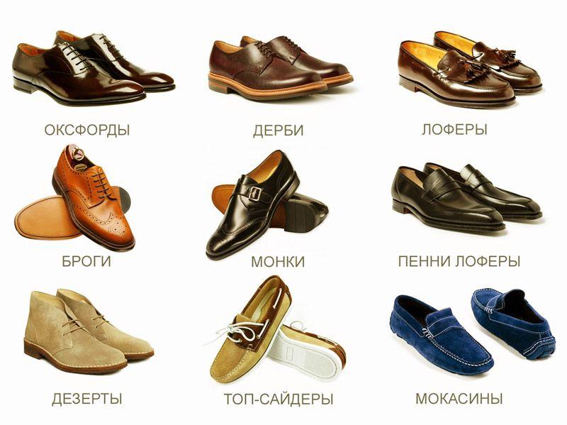 женская обувь разновидности с фото и названиями отдают предпочтение звезды
