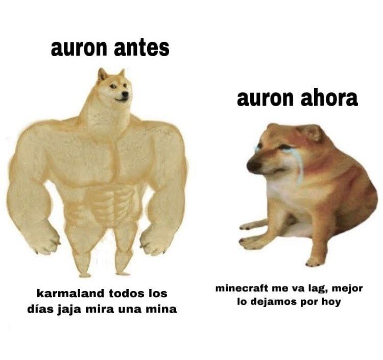 Fotos Perro Grande Perro Chico El Meme Del Momento Que Se Burla