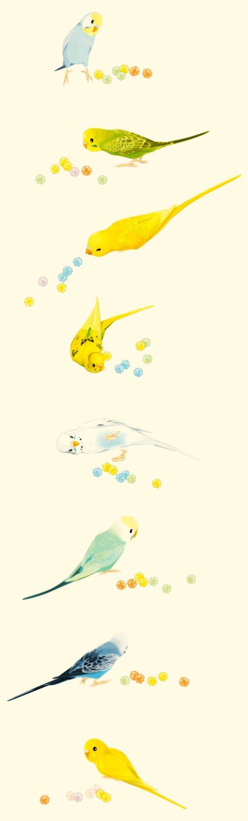 Cute Birds Art share cute things at www.sharecute.com