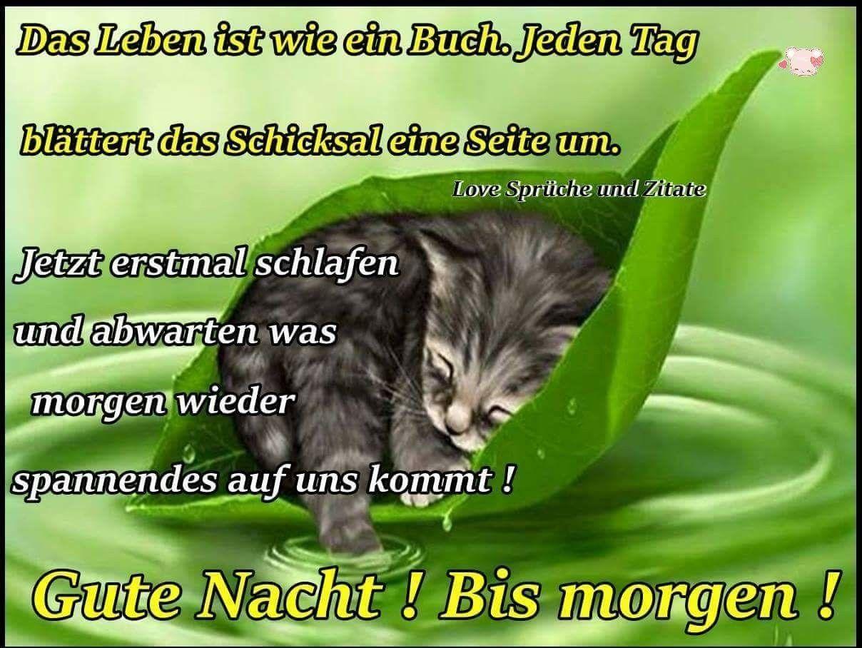 Pin Von Karin Hanschke Auf Gute Nacht Sprüche Guten Abend