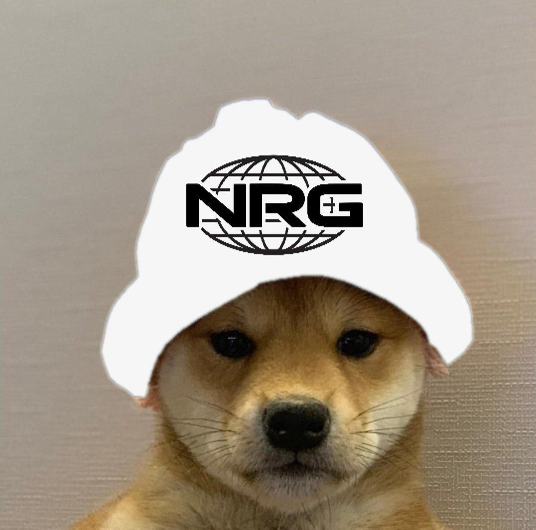 NRG Dogwifhat In 2020