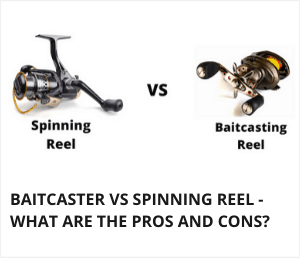 Baitcaster Vs Spinning Reel Compared In 2020 Spinning Reels Spinning Fishing Reels