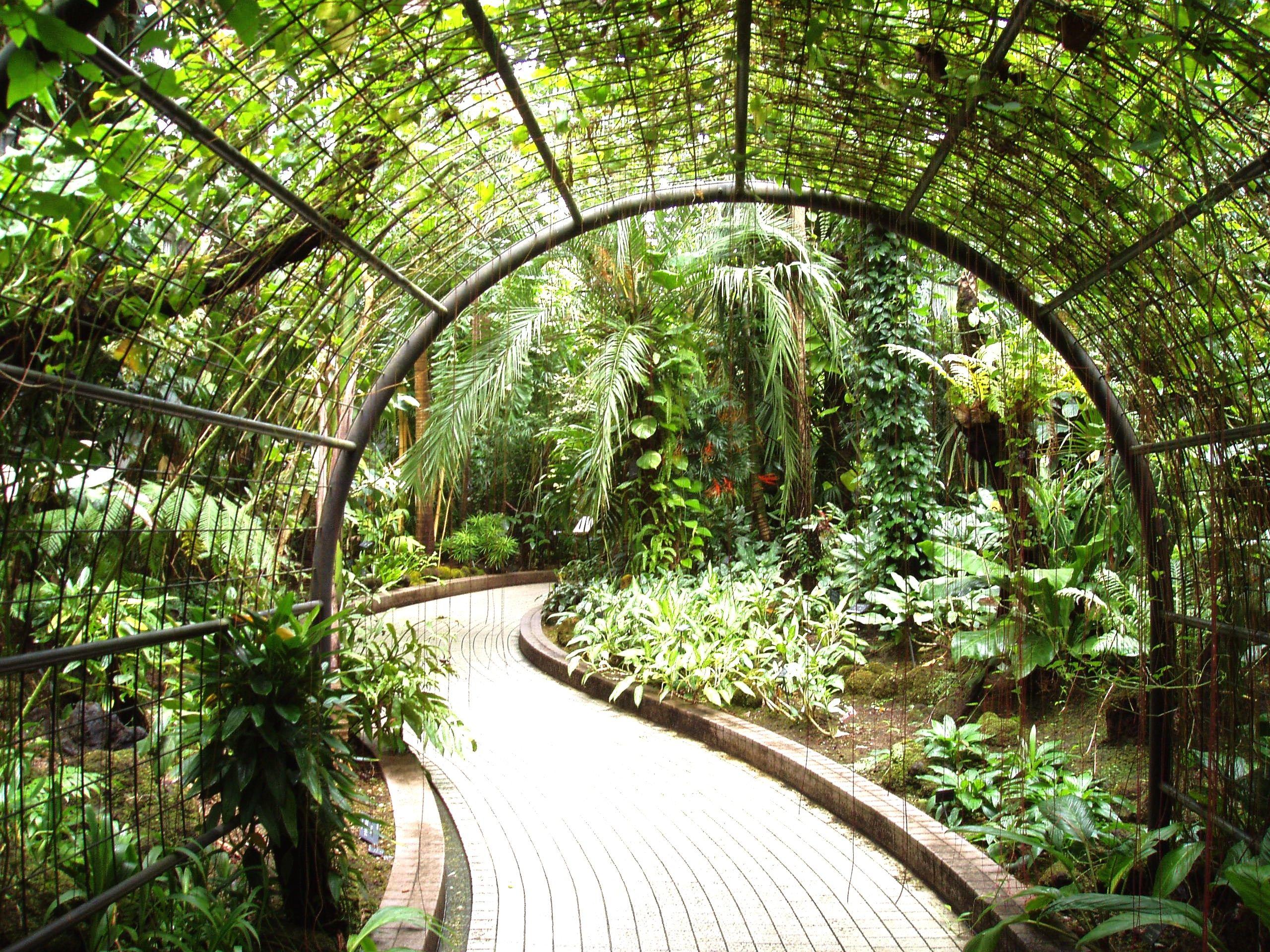 97ff5a4b6b26227ef4edd6c8f627c068 - How Big Is The Botanical Gardens