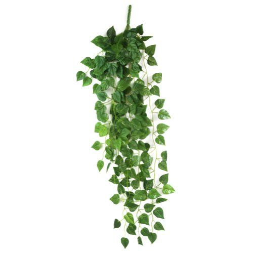 Atificial Fake Hanging Vine Plant Leaves Garland Home Garden Wall Decoration Generic Http Www Amazon Com Garden Wall Decor Fake Hanging Plants Hanging Plants