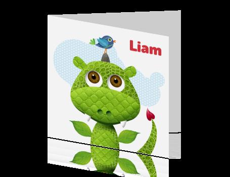 geboortekaartje draak groen jongen groene draak