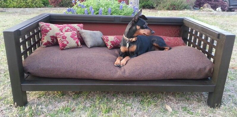 King S Throne Www Perfectpetpalace Com Custom Dog Beds Beautiful Bedding Dog Bed