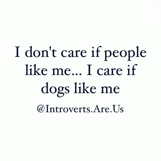 Introverts be like... #IntrovertsAreUs