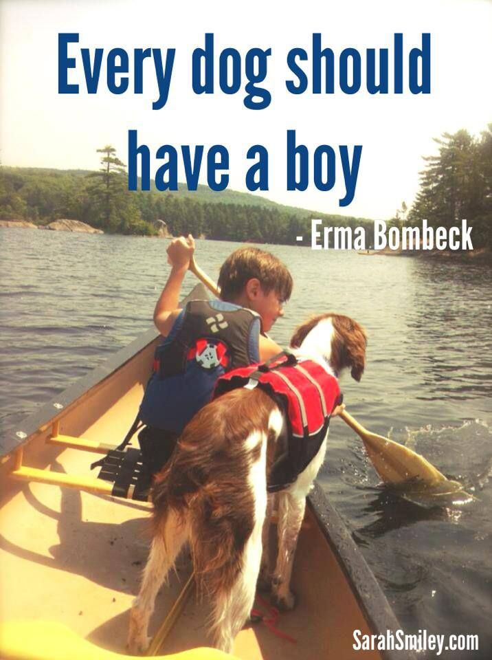 Every Dog Should Have A Boy Erma Bombeck Erma Bombeck Dogs