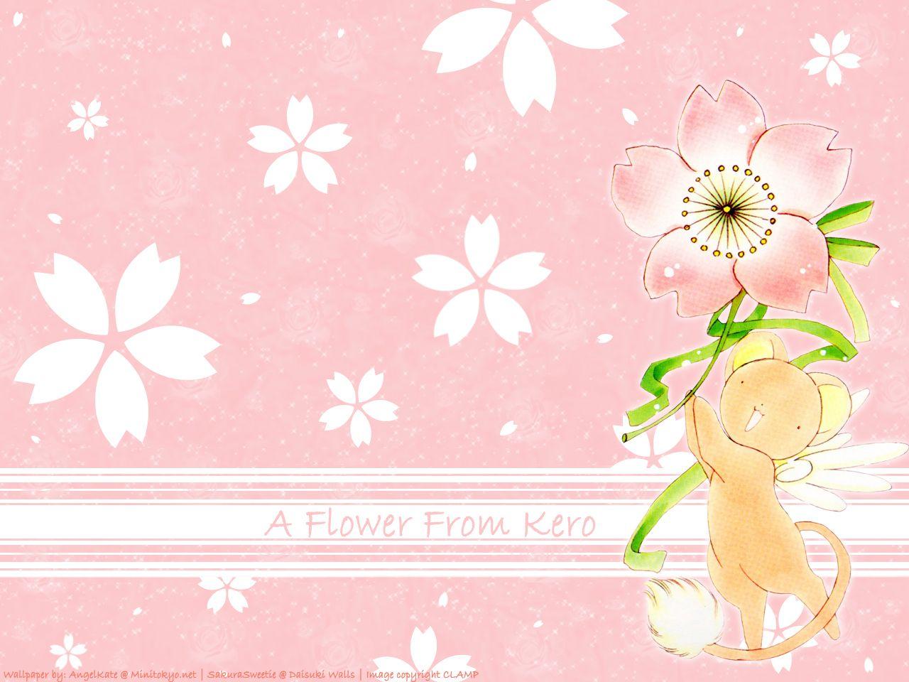 Cardcaptor Sakura Wallpaper A Flower From Kero Sakura Cardcaptor Sakura Wallpaper